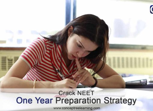 Crack NEET in one year Preparation strategy